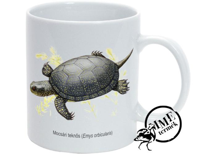 Bögre - mocsári teknős
