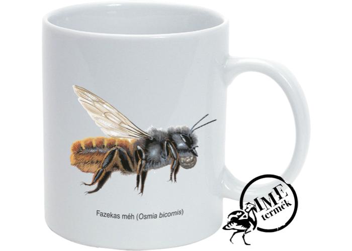 Bögre - fazekas méh