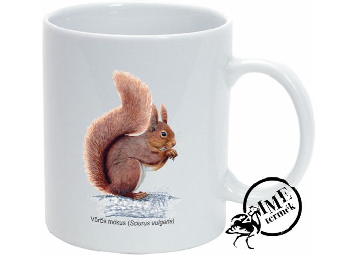 Bögre - vörös mókus