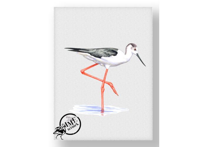 Falikép - gólyatöcs