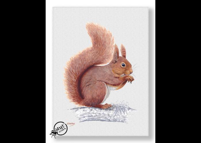 Falikép - vörös mókus