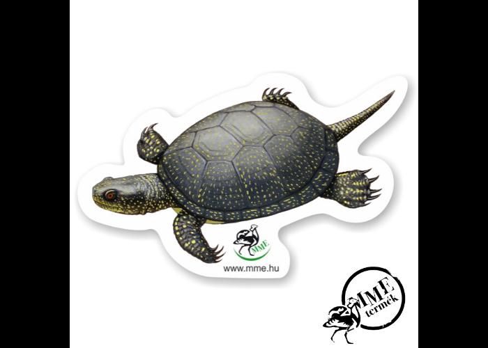 Mágnes - mocsári teknős