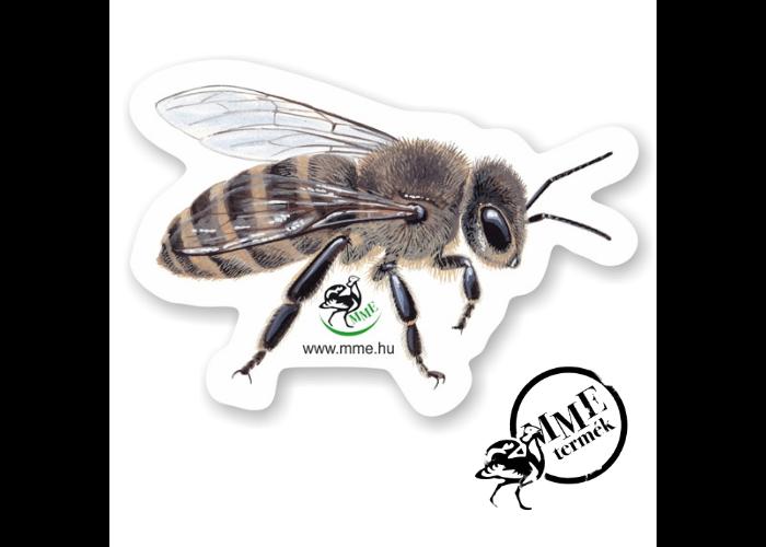 Mágnes - háziméh