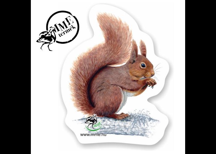 Mágnes - vörös mókus